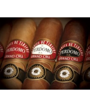 Perdomo GC 2006 Grand Churchill 7x60 bx24