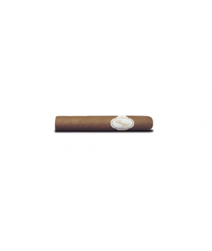 Davidoff 6000 - Pack of 4