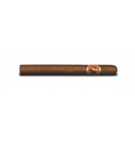 Avo Xo Maestoso - Box of 25