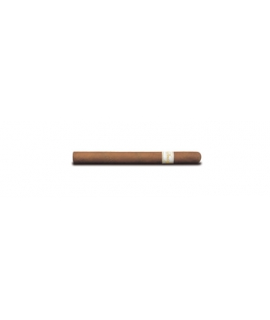 Davidoff Ambassadrice - Box of 25